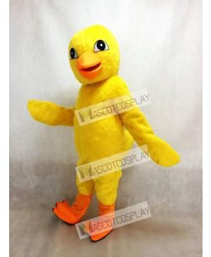 Cute Yellow Chick Mascot Costume