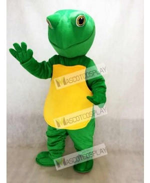 Green Turtle Mascot Costume