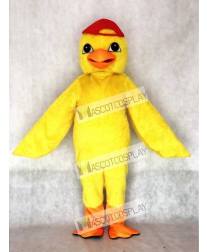Cute Yellow Chick Mascot Costume with Red Hat