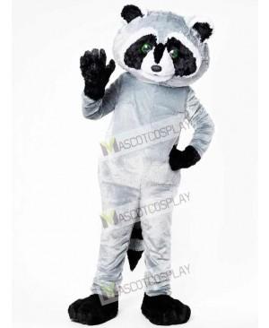 North American Raccoon Mascot Costume