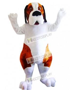 White and Brown Saint Bernard Dog Mascot Costume