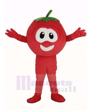 VeggieTales Character Tomato Bob Mascot Costume Cartoon