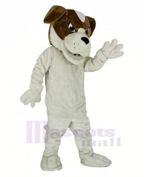 Saint Bernard Dog Mascot Costume Animal