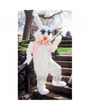 Peter Rabbit Bunny Mascot Costume