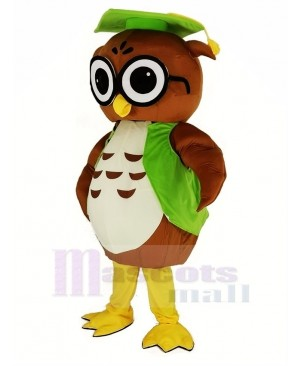 Brown Owl with Green Graduation Cap Mascot Costume Animal