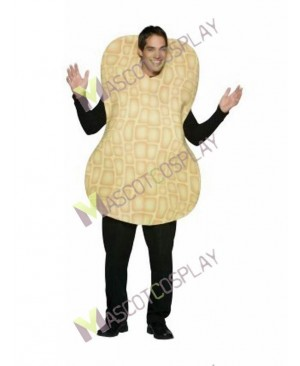 High Quality Adult Peanut Mascot Costume